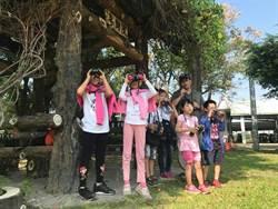 台南夏日樂學 86校辦理全國之冠