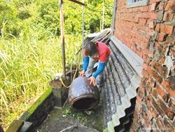 台南增一登革熱本土病例 為首起群聚感染