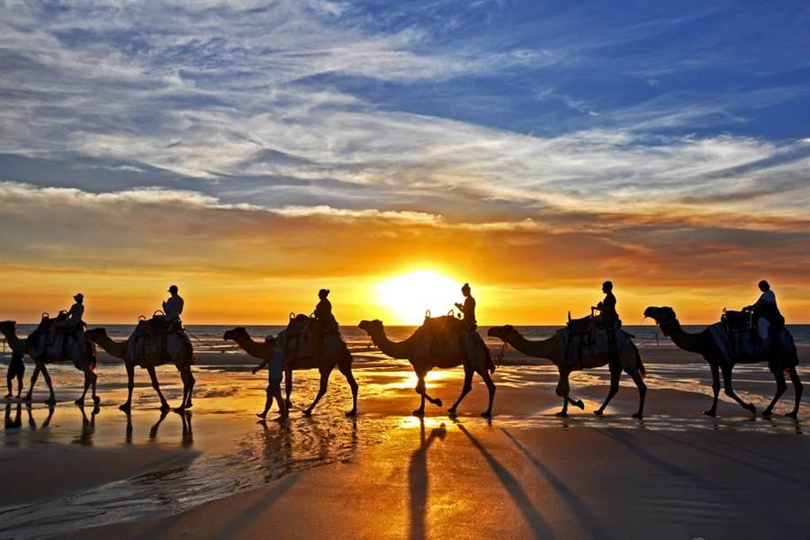 澳洲西澳省(Western Australia)外海今日午後遭遇史上最大、規模6.6強震襲擊,西澳城市布隆、伯斯等地都能感受到強烈晃動。圖為西澳觀光勝地布隆著名的落日下騎駱駝美景。(圖/shutterstock)