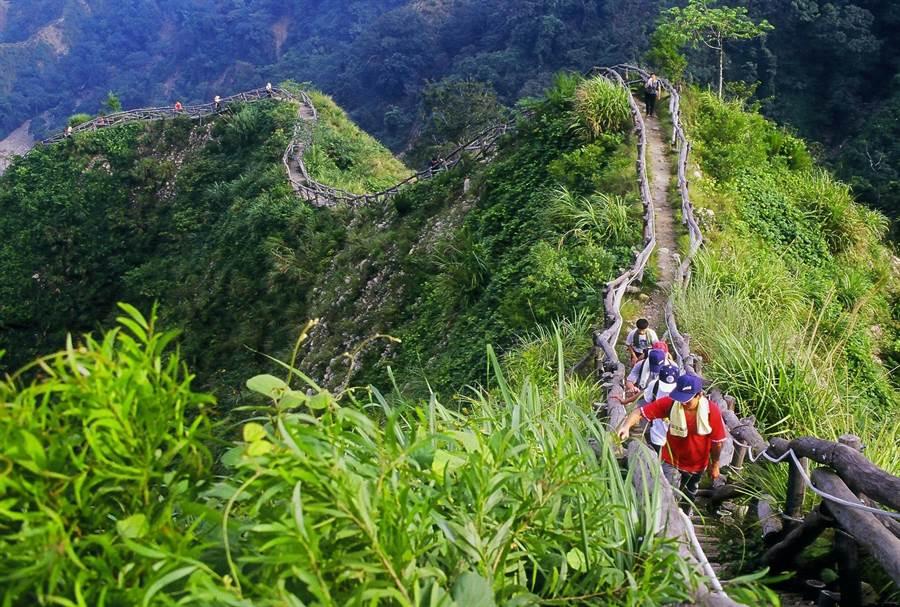 大坑登山步道提供中部民众健身、接触大自然的好所在。