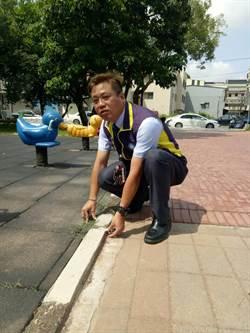 清水磚變成跌倒磚 平鎮廣仁公園缺失改善