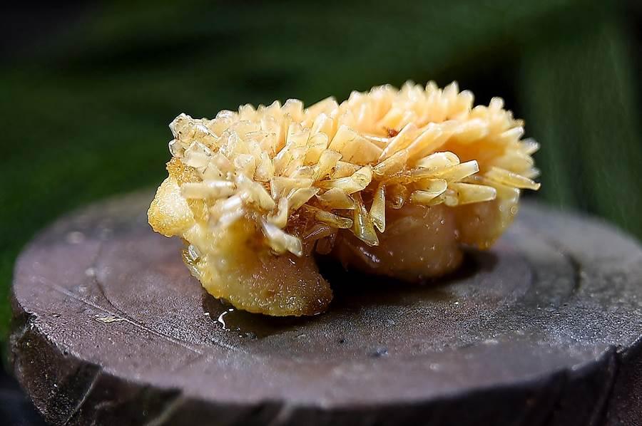 〈甘鯛立鱗燒〉就是將日本人稱為「甘鯛」的馬頭魚魚鱗炸起豎直,享受鮮嫩的魚肉和酥脆的魚鱗口感。(圖/姚舜)