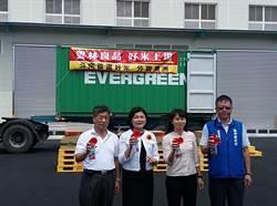台灣越光米獲歐美青睞 當地超市買得到