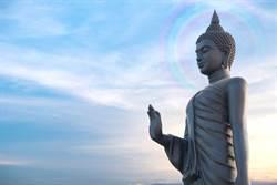 佛像腦勺神奇長出菩提樹 信眾朝聖:佛祖顯靈