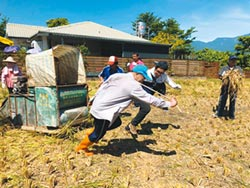 米棧社區 農村體驗傳承保種