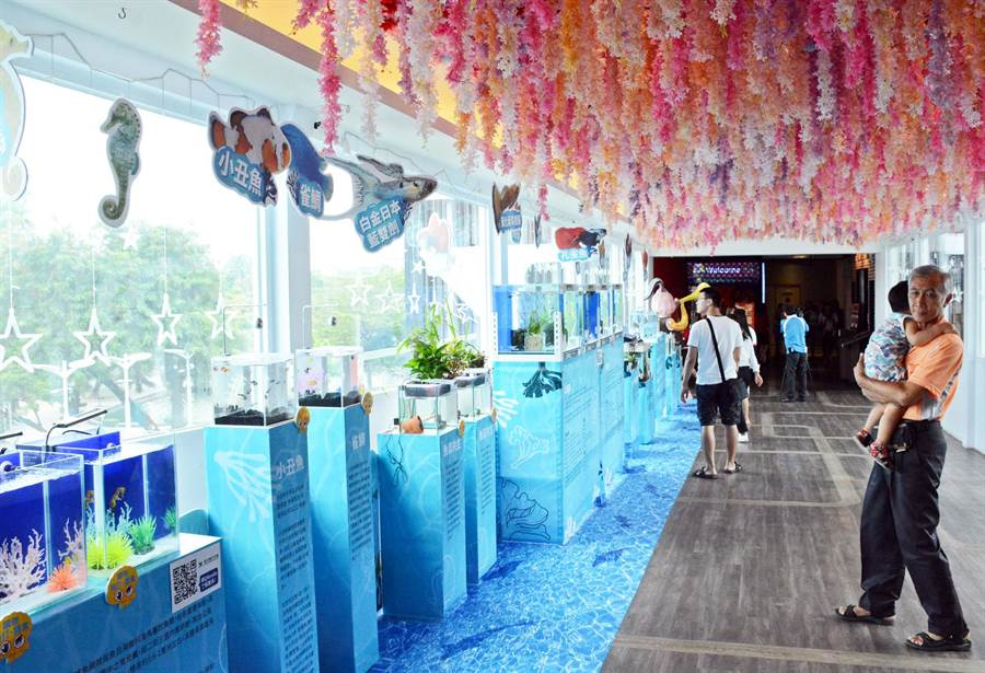 养殖业者与百货公司合办观赏鱼国际赛,擦亮屏东观赏鱼之都的美名。