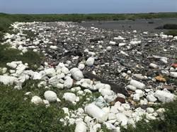 彰化獲最髒海岸第2名 大城南段垃圾淹沒海堤