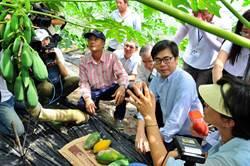 《經濟》陳其邁:高市將列為香瓜、西瓜災損救助區