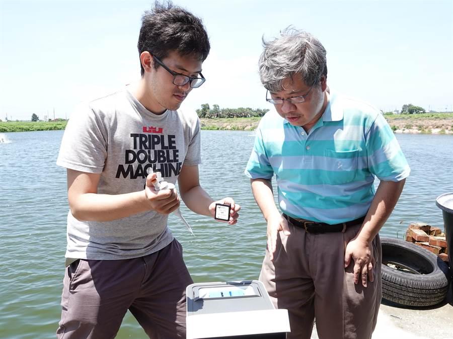 中正大學奈米生物檢測科技中心主任王少君(右)帶領學生往返嘉義在地合作的魚塭,架設感測器並反覆測試,研發「即時養殖池水病原體監控」技術,只要0.1毫升池水滴入感測器晶片,20分鐘內即確認池水是否受到病毒感染。