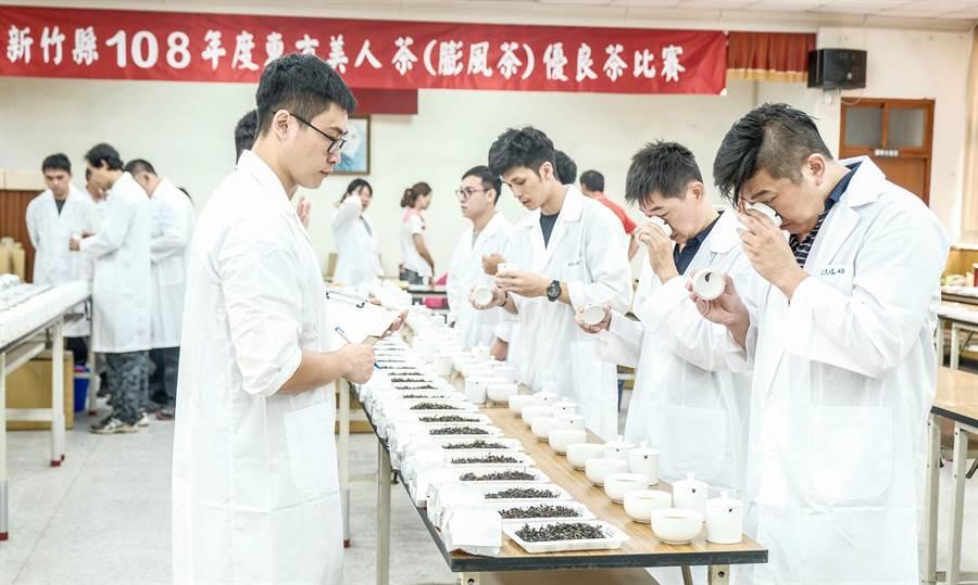 年輕茶農組成的初審團評茶委員,對參賽茶樣做聞香的香氣評分。(羅浚濱攝)