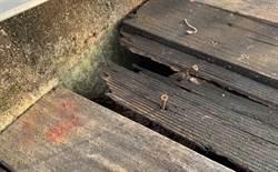旱溪沿岸自行車道嚴重損壞 市府:要求施工廠商加強進度