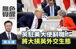 無色覺醒》賴岳謙:英駐美大使辭職!將大損英外交生態