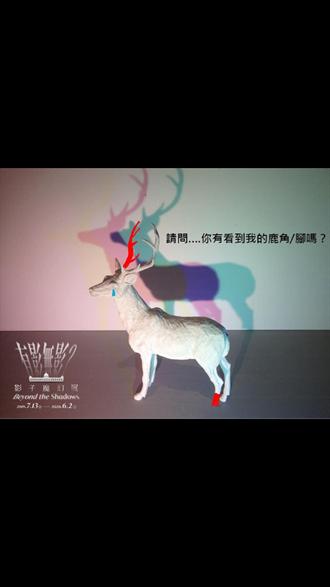 消失的鹿ㄐㄧㄠˇ 奇美博物館影子展開展第5天傳慘案