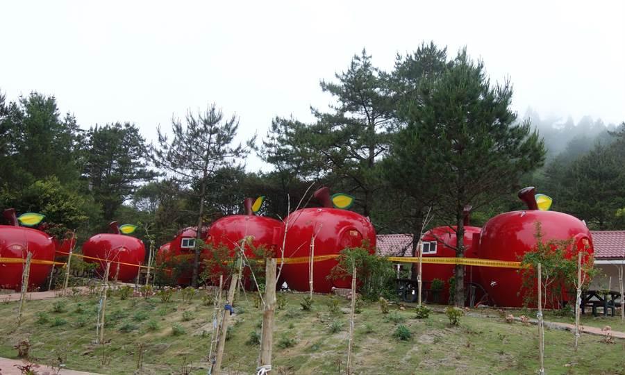 民眾質疑「福壽山農場露營區蓋蘋果屋違建!」相關單位聯合稽查,認定並未違法,但也找不到合法依據,園方拉起封鎖線,不開放遊客進入。(讀者提供)