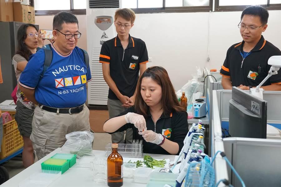 新北果菜公司表示,為了守護消費者食的安全,又不能延誤蔬果拍賣交易進度,利用快速生化法來檢驗出農藥殘量是否達到安全標準。(吳亮賢翻攝)