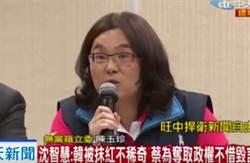 陳玉珍:蔡政府想讓清朝文字獄再現嗎?