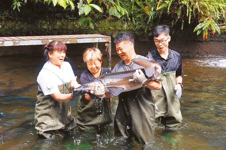 漁YA旅行,千戶傳奇生態農場──鱘農趣「與龍共舞」。
