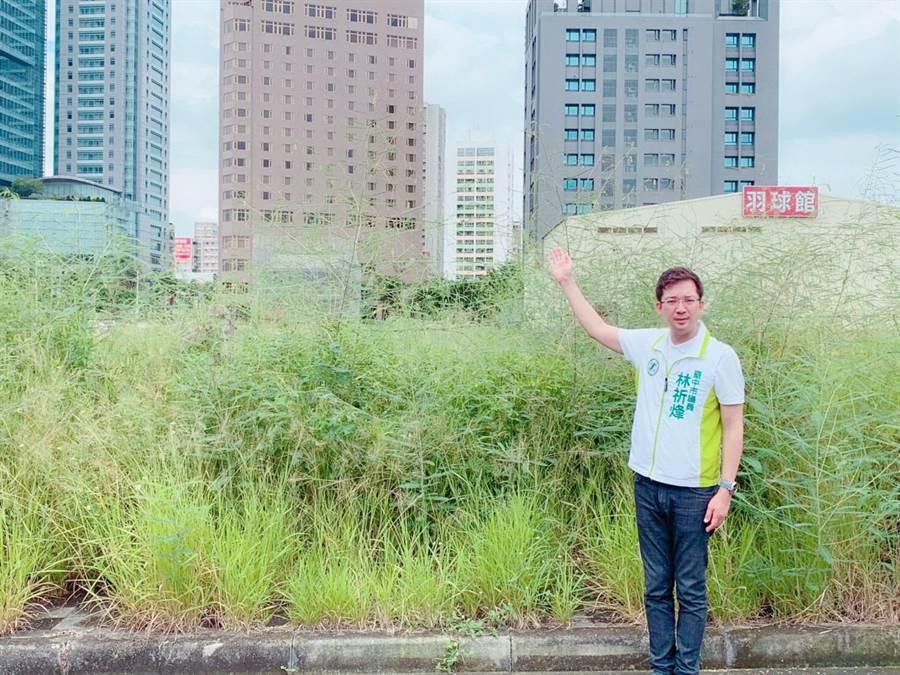 台中市高樓大廈林立的都會區,竟出現草比人高的景象,台中市議員林祈烽擔心成為治安死角。(盧金足攝)