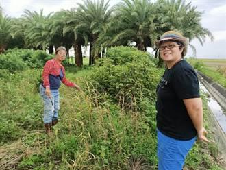 為守護台灣土地 瘋廚師與農學徒用「愛」做料理