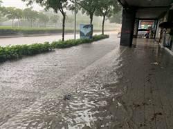 雨彈狂炸 大安森林公園淹成水池