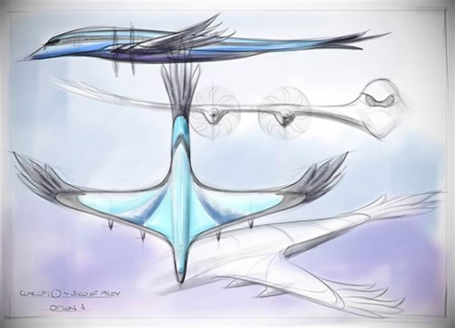 獵食鳥的早期概念圖。(圖/空中巴士)