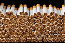 張善政問9千條菸抽多久?網神回