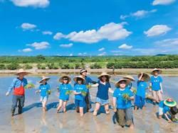 大暑日下田趣 文德小學生體驗一日農夫