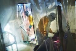 剛果伊波拉疫情失控 屬全球最緊急狀況