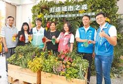 新竹市推綠屋頂 打造城市森林