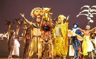 《獅子王》音樂劇有在地詞彙! 更接地氣不輸電影版