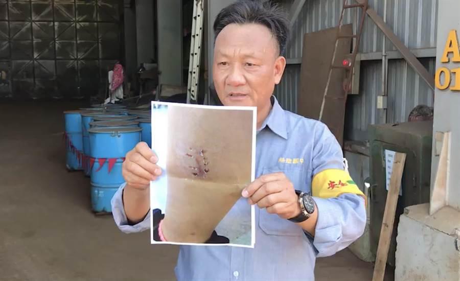 台船基隆廠的員工,最近遭到咬傷,所以才一度禁止愛心媽媽餵食浪浪。(張穎齊翻攝)