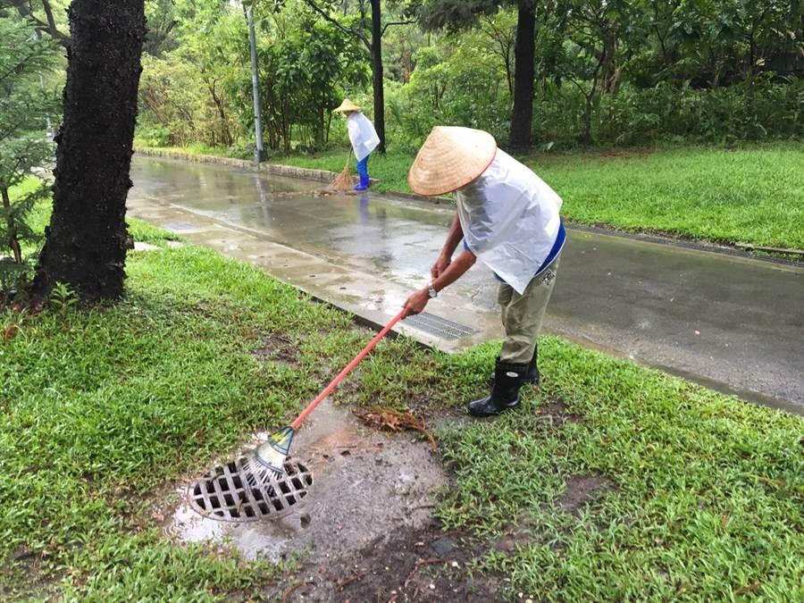 北市公園處澄清,每日至少清掃一次落葉,下大雨時會特別用耙子去掃排水口。(工務局提供)
