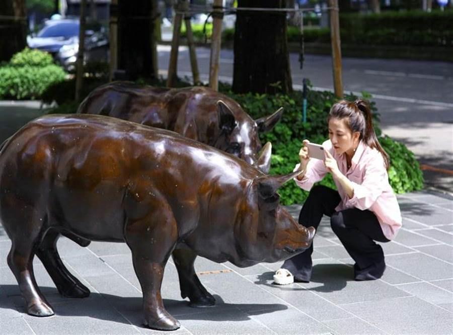 聯聚建設雍和大廈的小豬「雍雍和和」雕塑,為建築增添幽默趣味,也成為愛好攝影者取景的亮點。(盧金足攝)
