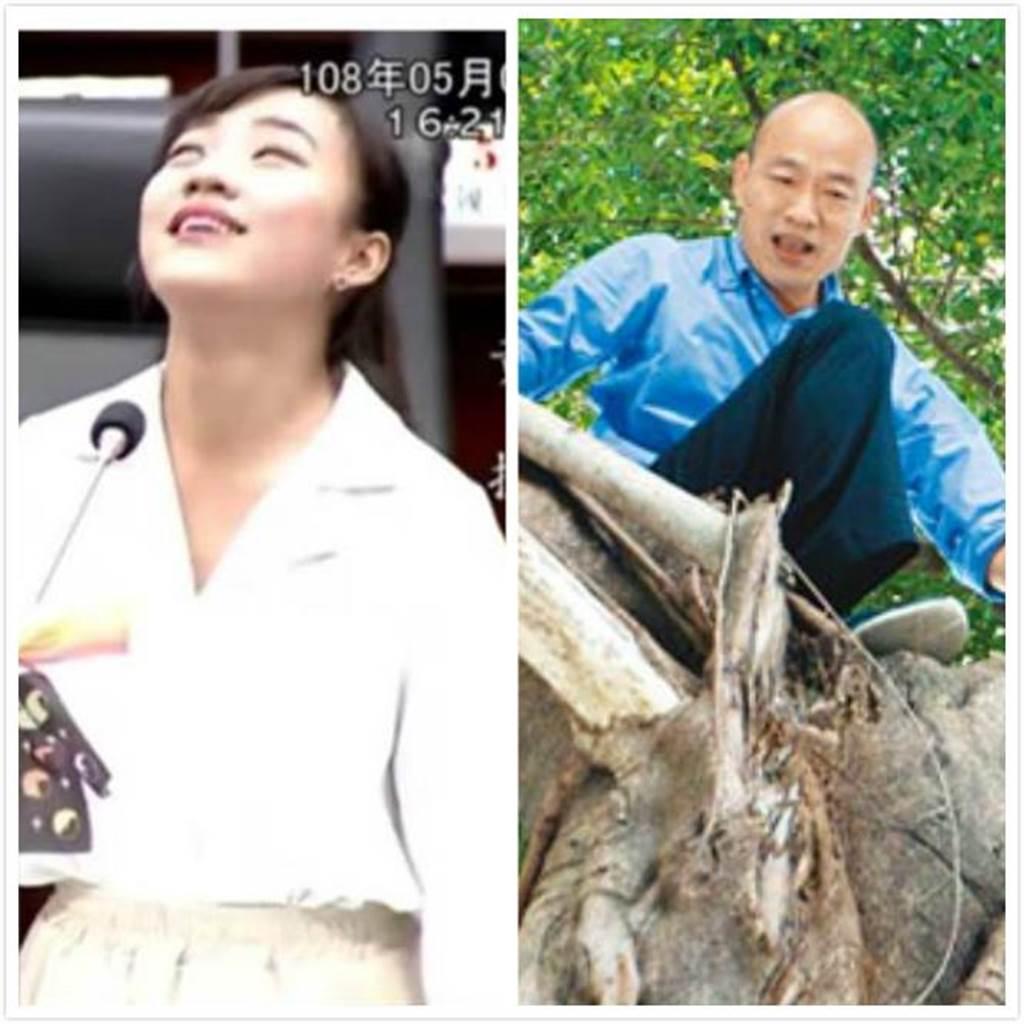 高雄市長韓國瑜(右)24日為了視察西山里的登革熱防疫,攀上近2層樓高大樹,查看樹洞積水狀況,但市議員黃捷(左)狂酸。(資料照/袁庭堯攝)