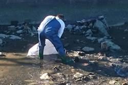 新竹鑫磊水泥製品公司汙染河川 負責人起訴