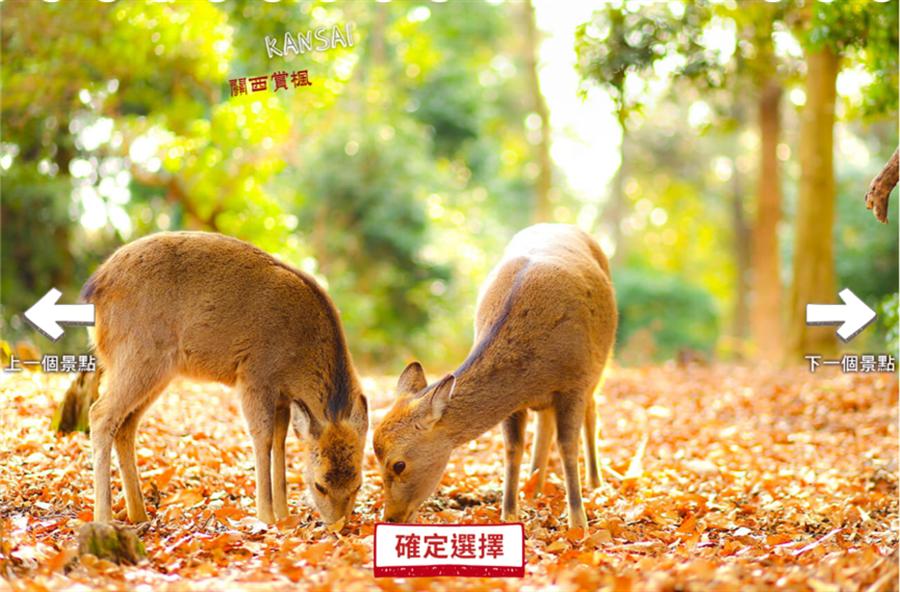 ▲關西奈良的小鹿,滿地的楓紅是否也有屬於你的回憶。/盈達旅遊提供