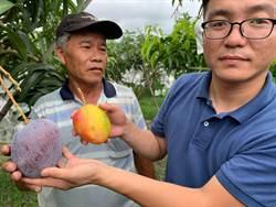 拓展台東農特產品通路 瞄準中國大陸市場