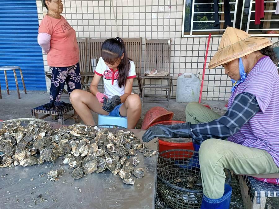 吳小妹(右二),平時幫忙家裡剝牡蠣,今年還參加東石剝蚵競賽,拿下校園組第3名。(張毓翎攝)
