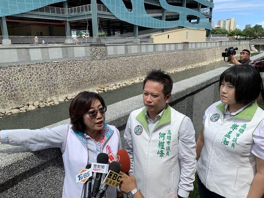 針對719高雄淹水,綠議員們今天開記者會痛批高市府治水不力,更狀告法院。(柯宗緯攝)