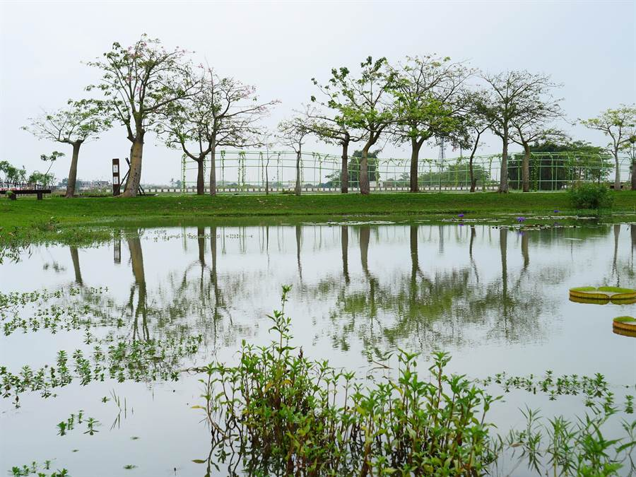 環保署辦「土水詩與景」攝影文學創作比賽,歡迎民眾參加。圖為農委會水保局的田寮社區文學步道營造工程,如詩如畫,美不勝收。(圖/水保局提供)
