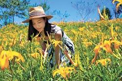 夏日風味花食 養眼又養生