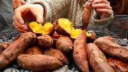 地瓜要吃对!欧洲研究:这样做热量少一半预防大肠癌