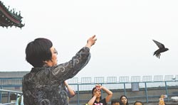 前門大街為北京雨燕安巢