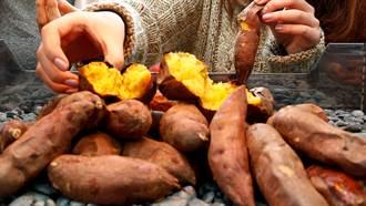 地瓜要吃對!歐洲研究:這樣做熱量少一半預防大腸癌