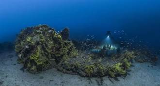 海洋調查團深潛4週 帶回海洋世界奇景