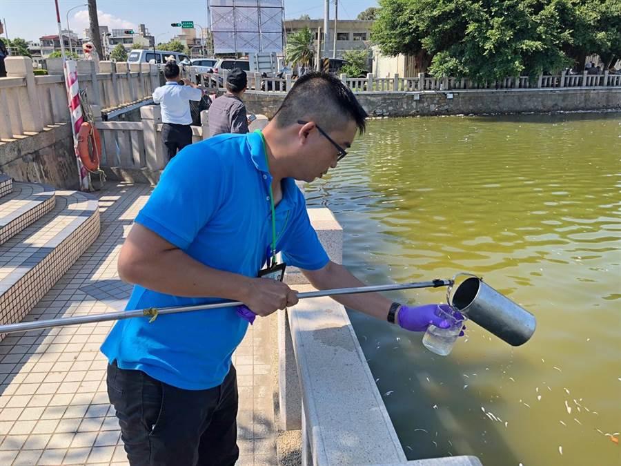 縣環保局派員現場採樣檢測,水溫攝氏35.5度、溶氧7、酸鹼值9,確切死因有待進一步鑑定。(李金生攝)