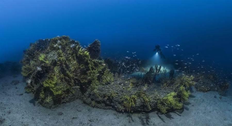 水下攝影師巴列斯塔歷經28天海底深潛,拍攝瑰麗的海底景色。(圖/Laurent Ballesta)