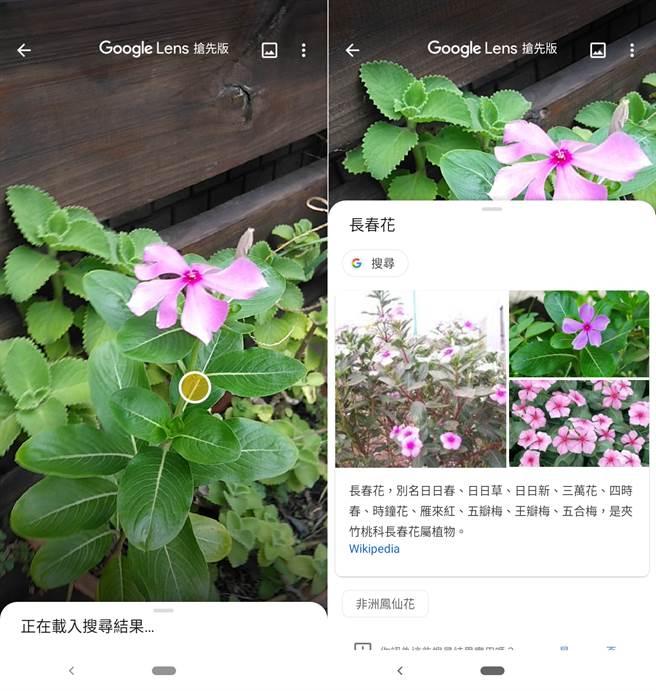 Nokia 4.2相機支援Google Lens。(圖/手機截圖)