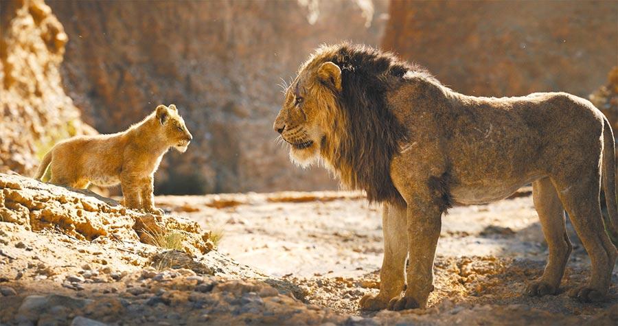 《獅子王》的動畫是許多人童年回憶,改編版同樣大受歡迎。