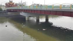 女跌落鹿港頂番橋溺斃